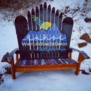 Winter Wonder Grass Ski & Snowboard Bench