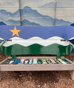 Colorado star snowboard bench
